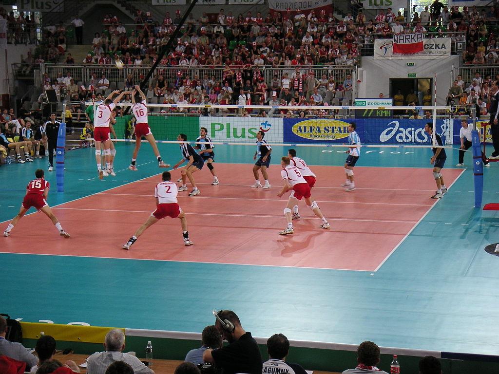 Siatkówka w 2005 roku
