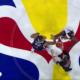 Francuzi w meczu z USA